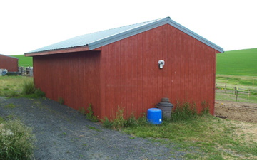 Evan's Shed